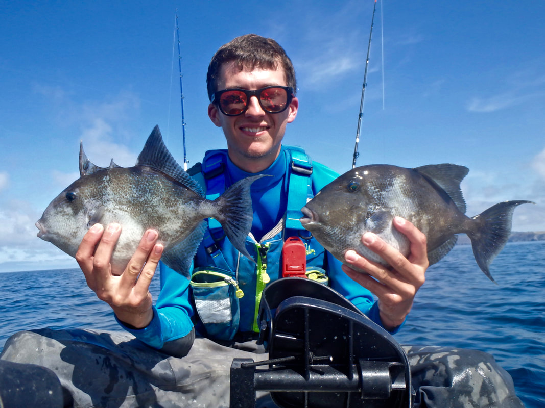 Kayak fishing for Trigger Fish in cornwall