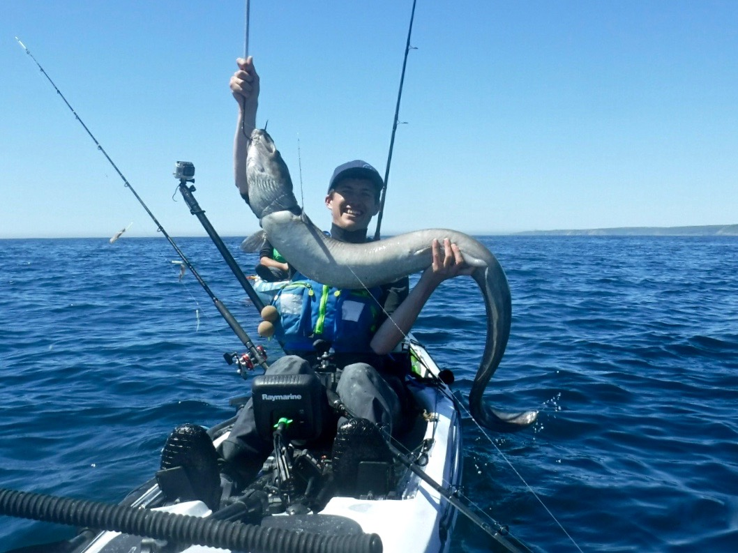 30lb+ Conger Eel caught kayak fishing on the RTM Rytmo Angler
