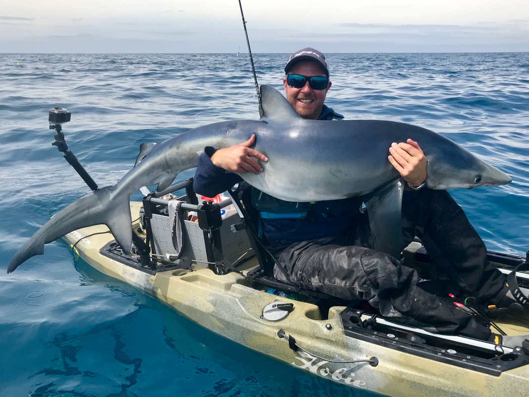 Ben Wallis with a 70-80lb Blue Shark caught on his kayak