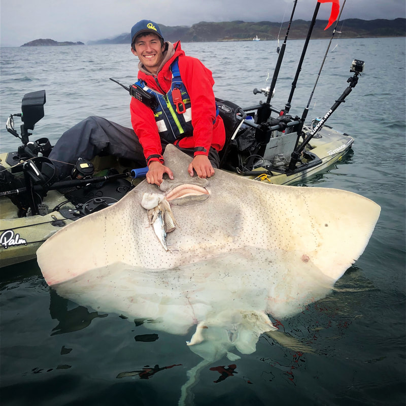 Kayak Fishing for Giant Skate