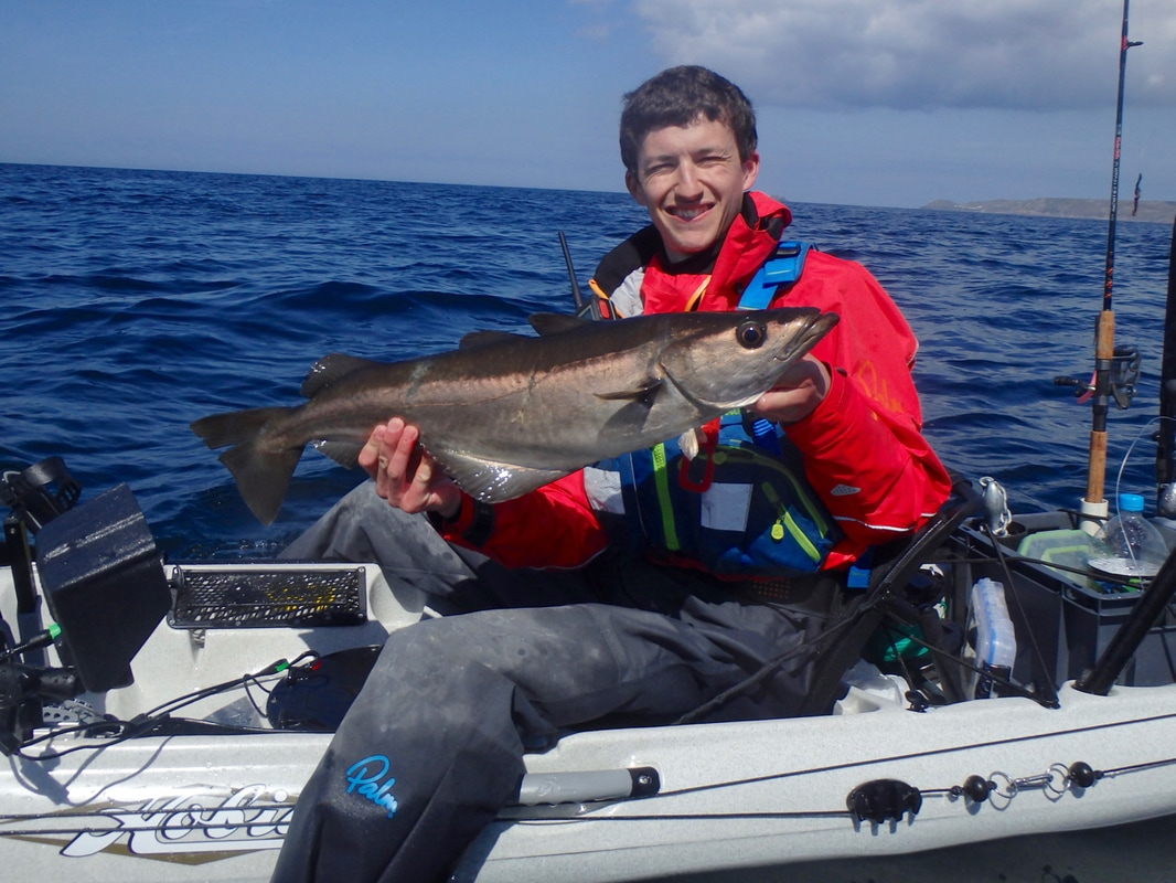 A nice Pollack caught lure fishing from the Hobie Revolution 16