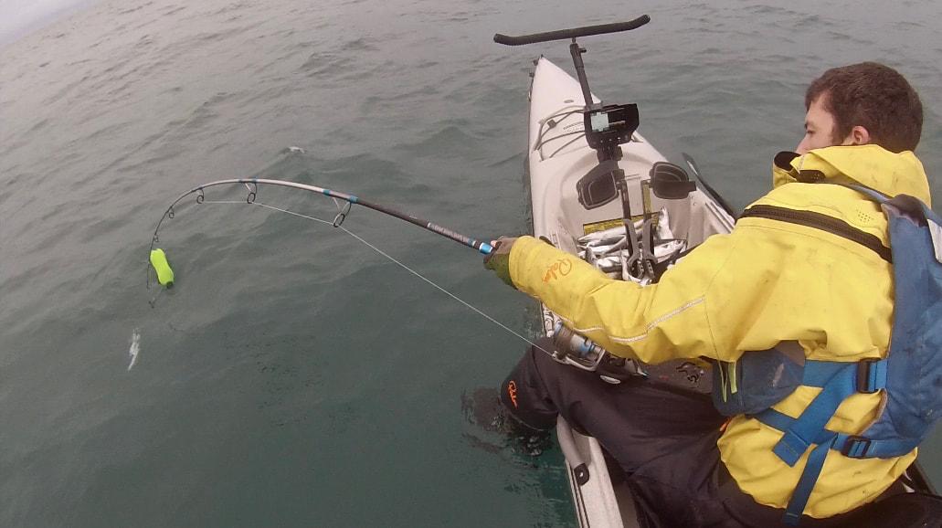 Playing a Porbeagle Shark on a Kayak