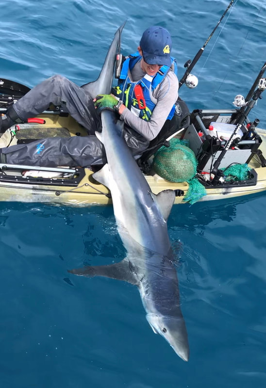 Liam Faisey with a 126lb Blue Shark caught kayak fishing